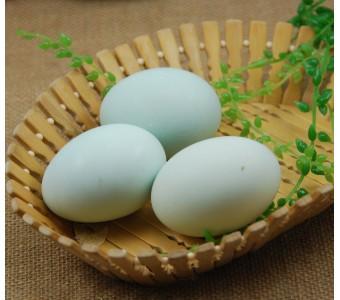 新鲜散养鸭蛋/鸭子蛋/新鲜散养