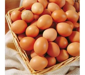 新鲜鸡蛋/鲜鸡蛋