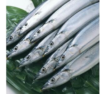 台湾新鲜秋刀鱼 1000g 烧烤最佳食材 鲜香味美