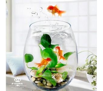 椭圆水晶玻璃生态金鱼缸现代时尚家饰水培花瓶