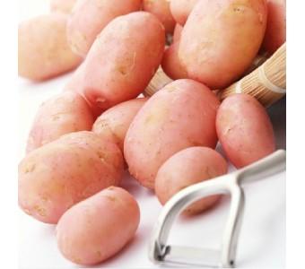 新鲜红皮黄心土豆6斤装