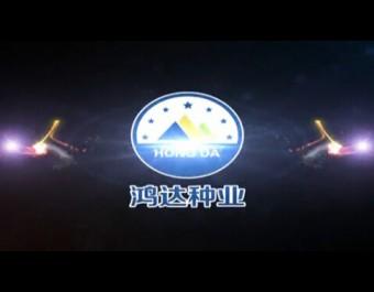 第四届鸿达种业水稻新品种发布会 (182播放)