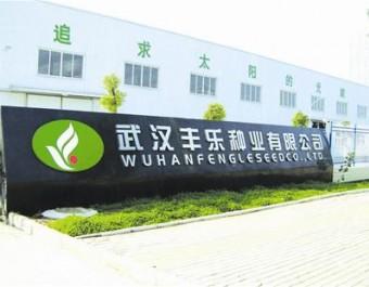 武汉丰乐种业企业宣传片 (374播放)