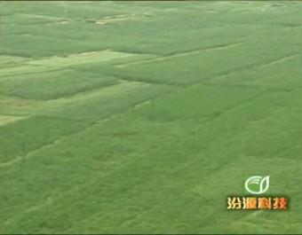 汾源科技农业企业宣传片 (245播放)