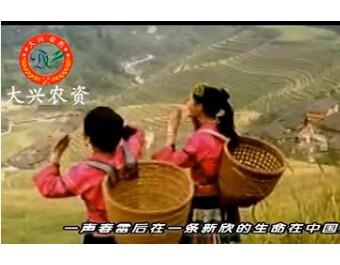 芷江大兴农资企业宣传片 (314播放)