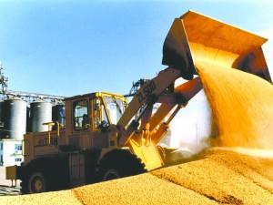 阿根廷大豆现货市场价格稳定