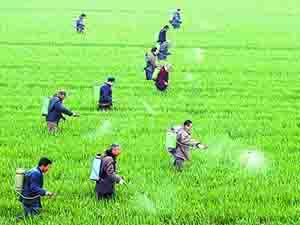 旱情催逼农药产业方向性调整