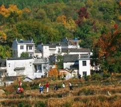 北京金旺农业生态园 (1)