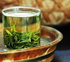 相约龙井——春茶会 (2)