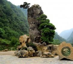 重庆黑山谷风景区 (1)