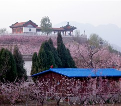 挂甲峪村 (4)