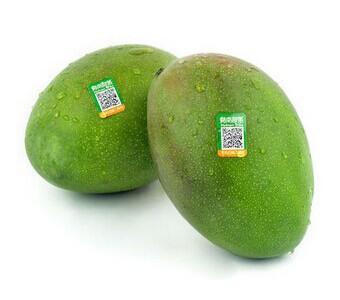 三亚新鲜水果包甜大芒果王青芒绿皮澳芒