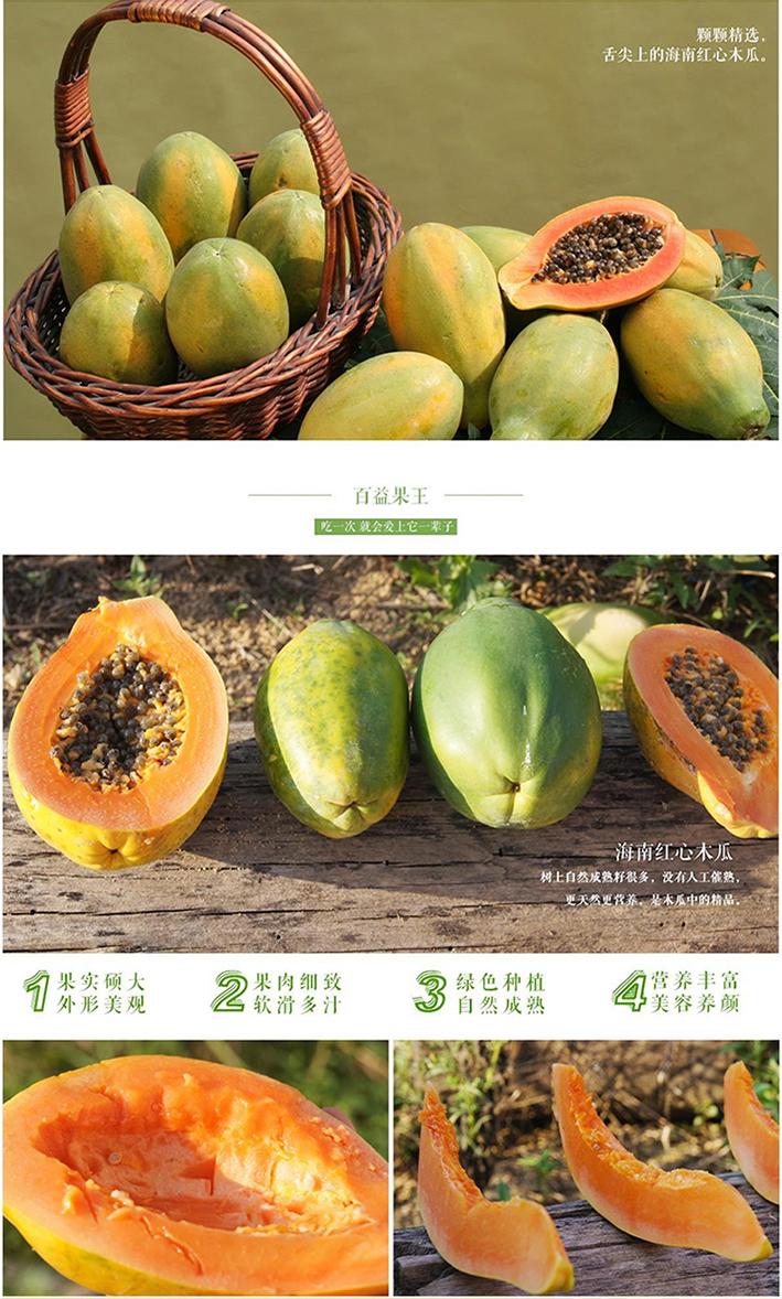 海南三亚树上熟红心木瓜新鲜水果批发 5斤起拍包邮