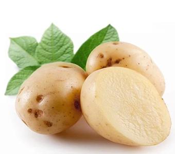 新鲜土豆马铃薯 10斤包邮