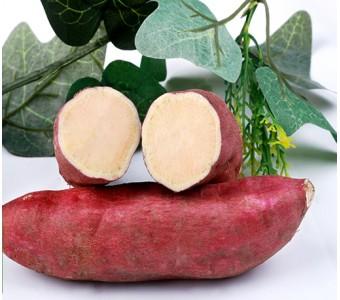 新鲜正宗临安天目小香薯番薯红薯地瓜山芋特级
