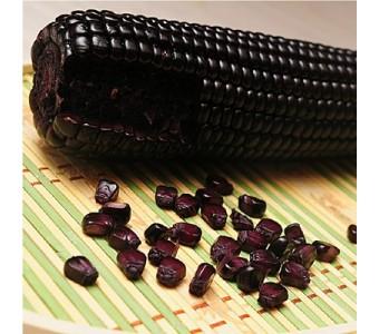 新鲜玉米 最嫩紫糯玉米棒整箱真空包装9根