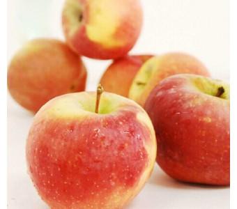 疆阿克苏冰糖心苹果10斤 新鲜水果红富士
