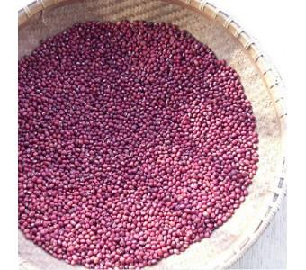 品 农家自种红豆 赤豆散装250g包邮