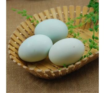 新鲜 生鸭蛋 1.6元/个