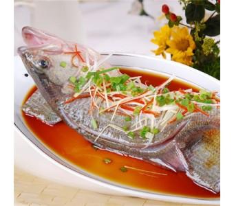 冰鲜淡水鲈鱼约500克/条
