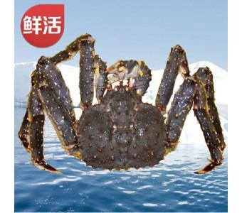 阿拉斯加鲜活帝王蟹2000g 进口海鲜