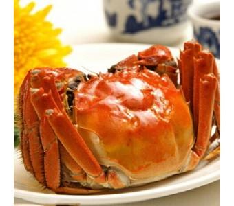 正宗阳澄湖大闸蟹鲜活螃蟹产地直销新鲜螃蟹公4.1-4.2两