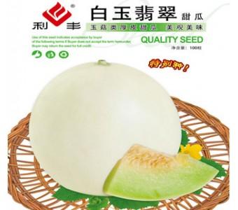 白玉翡翠  玉菇类厚皮甜瓜 100粒