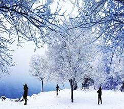 吉林雾凇冰雪节 (2)
