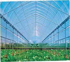 特色农业 (2)