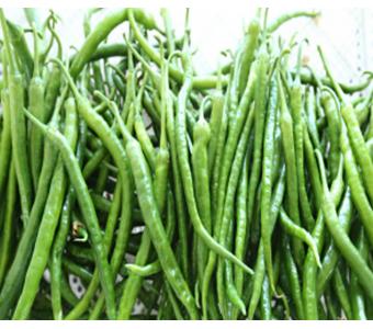 有机绿色蔬菜辣椒 沙之洲绿色生态蔬菜--细尖椒(秦椒)