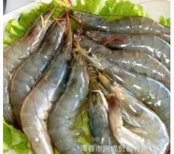 朝鲜青虾 鲜活青虾 竹节虾供应 鲜活竹节虾 朝鲜海鲜批发