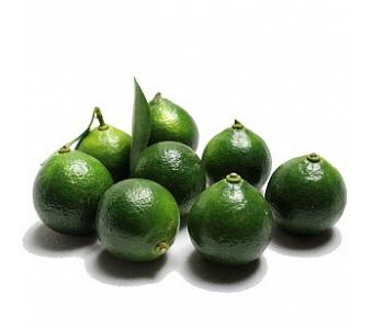 海南特产水果青金桔 新鲜水果批发小青橘子柠檬 冷饮奶茶原料酸柑