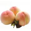 【现货】新鲜水果 北京平谷久保 平谷大桃 精品桃礼盒装