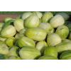 东北特产甜香瓜  香甜爽口 新鲜水果甜香瓜 绿色蔬果无农药