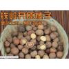 东北铁岭开原野生水漏小榛子2斤装 坚果零食干货特产