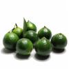 海南特产水果青金桔 新鲜水果批发小青橘子柠檬冷饮奶茶原料酸柑
