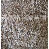 长期出售优质白桦树种子苗木白桦种子保质保量价格优惠