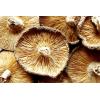 干香菇冬菇剪脚菇福建特产