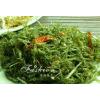 青海特产顶级鹿角菜 龙须菜原生态植物80g