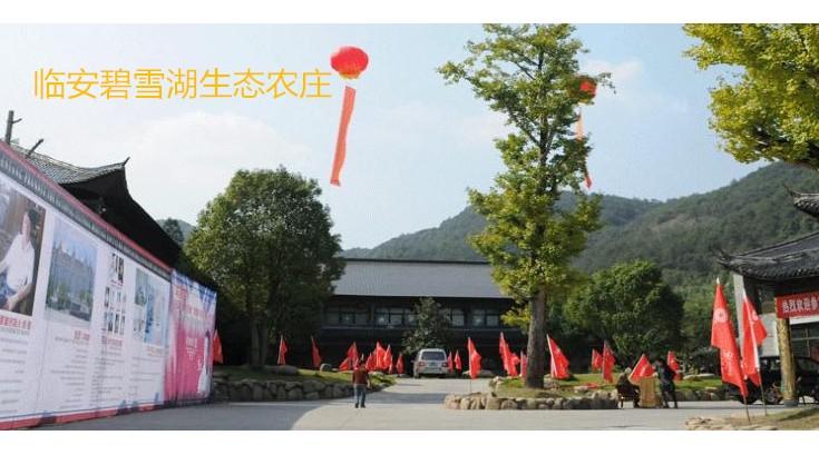 临安碧雪湖生态农庄 (4)