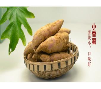 天目小香薯 5斤/盒 48元包邮