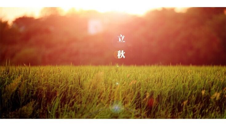 二十四节气之立秋 (4)