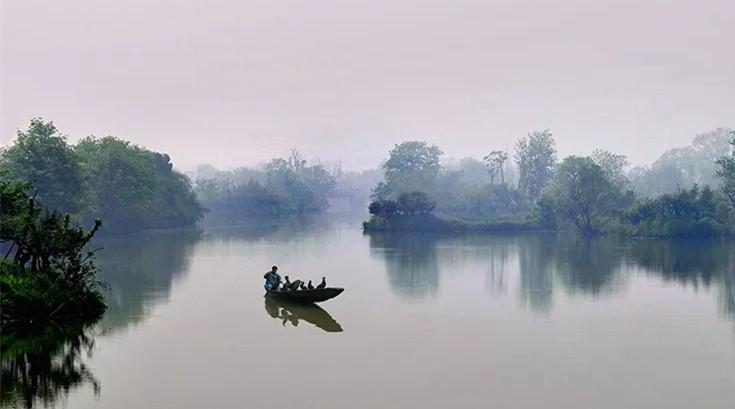 杭州西溪湿地一日游 (4)