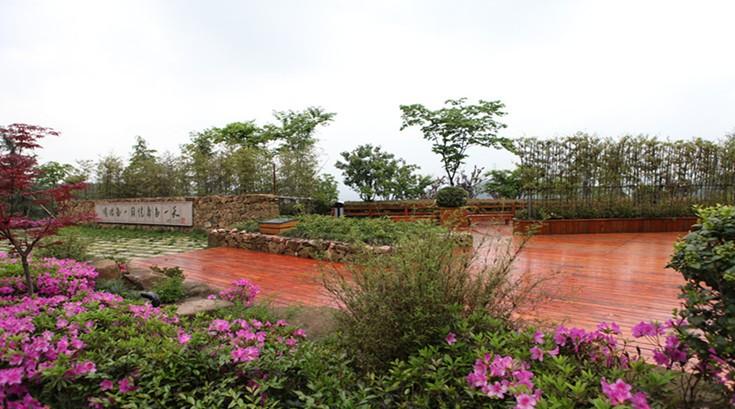 天子岭生态公园 (3)