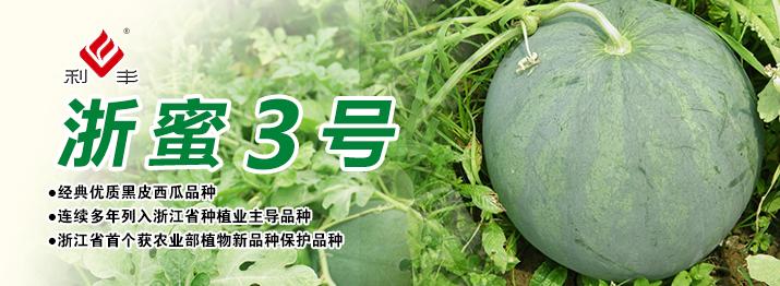 浙蜜3号西瓜浙江省首个获农业部植物新品种保护品种