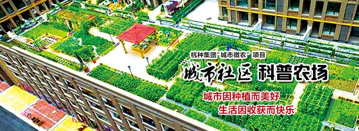城市社区科普农场 城市因种植而美好 生活因收获而快乐