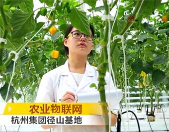 杭州种业集团开业宣传片 (1524播放)