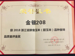 人见人爱的浙江省金奖甜玉米'金银208'